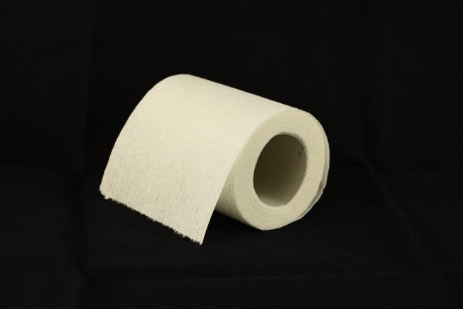 toilet-paper-1338433_1280